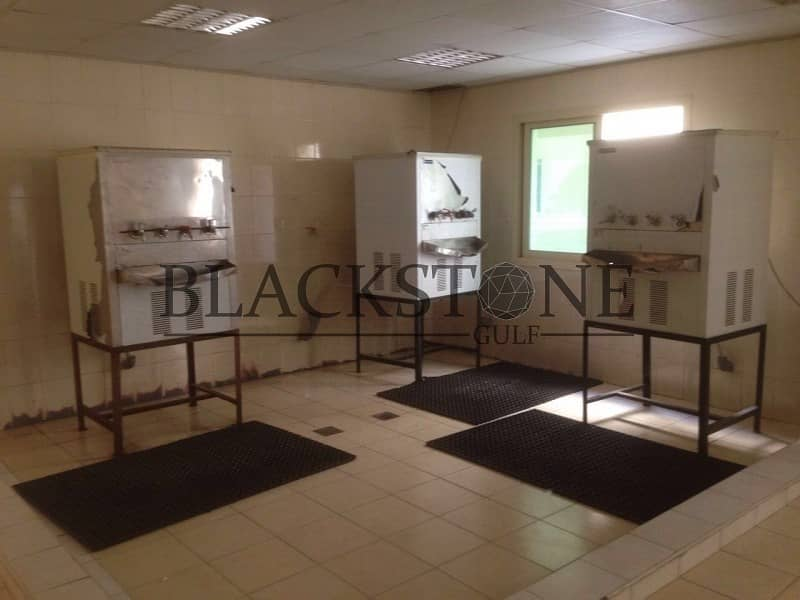15 G+4 Labour Camp for Sale | 557 Rooms