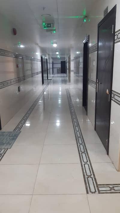 فلیٹ 1 غرفة نوم للايجار في المويهات، عجمان - أقل سعر لشقة بغرفة نوم واحدة للإيجار المويهات 3