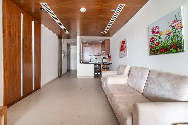 14 Spacious and Bright Furnished Studio Apt