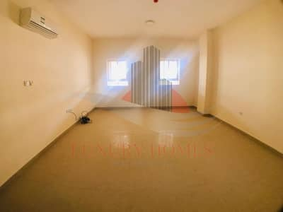 Bright and Spacious Apt. on Ground Floor