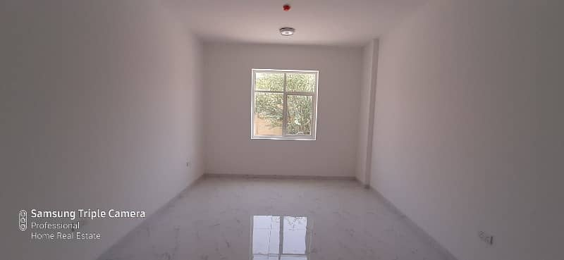 Large brand new 1 BR flat for rent in Jimi