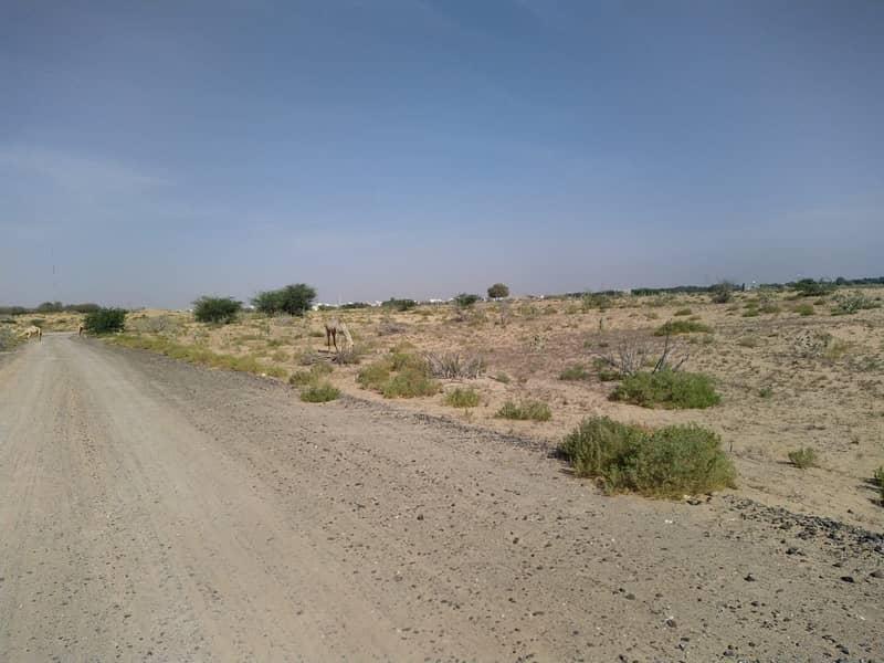 ارض سكنية في عجمان أب تاون 155000 درهم - 4650766