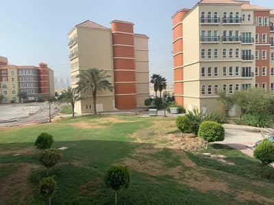 2 Bedroom Flat for Rent in Discovery Gardens, Dubai - Large 2 Bedroom, Maintenance Free, 13 Month