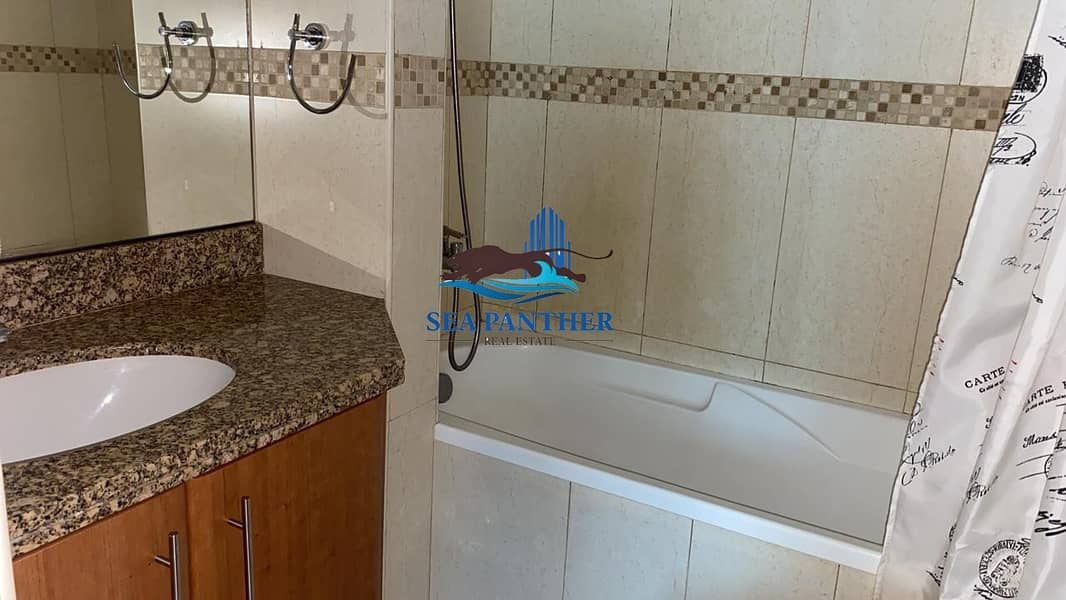 15 Fully furnished  1 BR Apartment   Near Metro