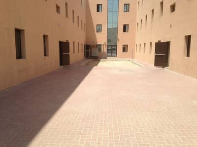 Labour Camp for Rent in Muhaisnah, Dubai - 2