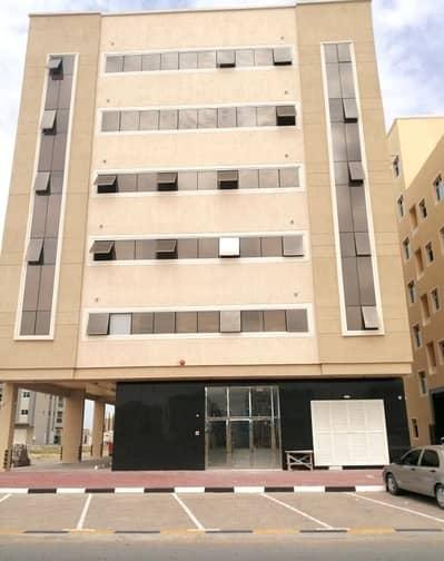 Building for Sale in Al Jurf, Ajman - Perfect Investment I Good ROI I Brand New Bldg
