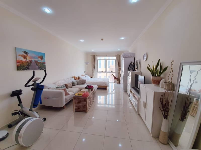luxury furnished large studio for rent in silicon spring building ready to move  chiller free also