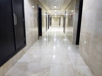 شقة 1 غرفة نوم للايجار في محيصنة، دبي - شقة في محيصنة 4 محيصنة 1 غرف 30000 درهم - 4704582