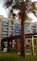 60 Well Maintained   Fully Furnished   Studio Apartment  with  Balcony