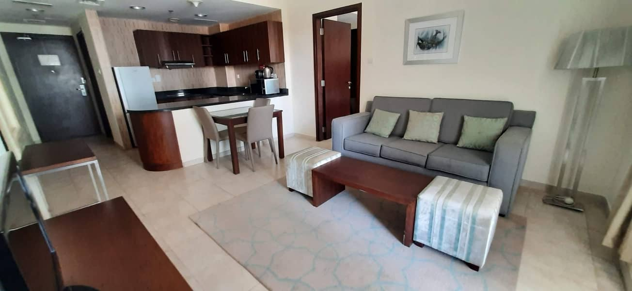 Spacious Fully Furnished 1 BHK apartment with pool view