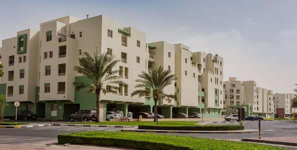 شقة 2 غرفة نوم للايجار في القوز، دبي - شقة في بوابة الخيل المرحلة 1 بوابة الخيل القوز الصناعية 2 القوز 2 غرف 49500 درهم - 4172082