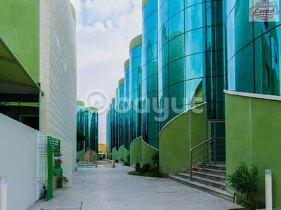 3 Bedroom Villa for Rent in Mirdif, Dubai - Now Open For Rent! Direct from Owner! No Commission! 3 Large BHK+Jacuzzi+Covered Parking+Maid's+Store