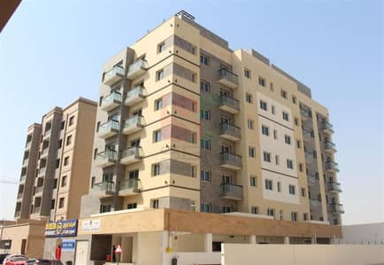 2 Bedroom Flat for Rent in Al Warqaa, Dubai - Spacious 2BHK + Store Available With Full Facilities