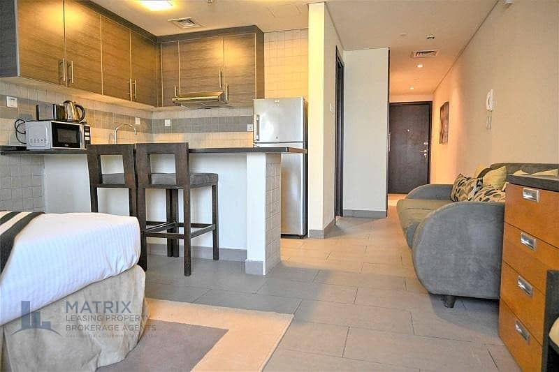 2 Fully furnished Executive Plus Studio  with storage in The Bridge