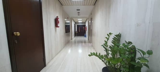 Amazing  2- Bedroom Apartment With Bright Living Hall - Khalifa Street