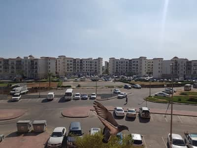 Excellent Deal Good ROI  Studio For Sale  In Greece Cluster