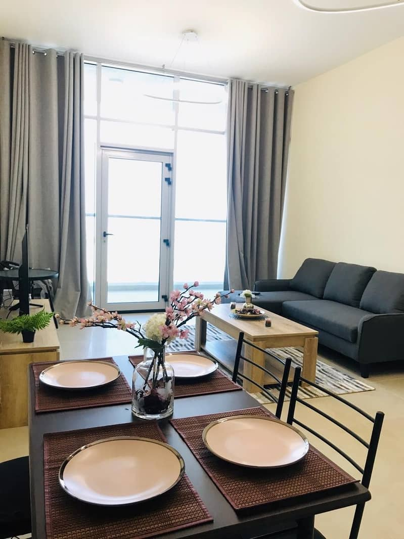 Spacious Fully Furnished 1 BR Apartment.