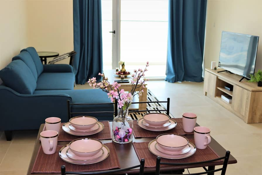 Brand New  Fully Furnished 1 BR Apartment.