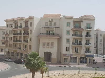 Ready to Move in 1 BHK in Greece Cluster Rent Just 22K