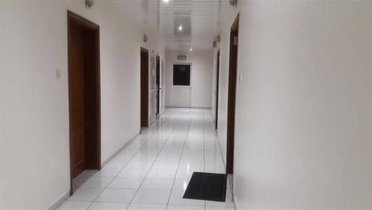Studio for Rent in Al Qasimia, Sharjah - specious studio separate kitchen one month free only 14000