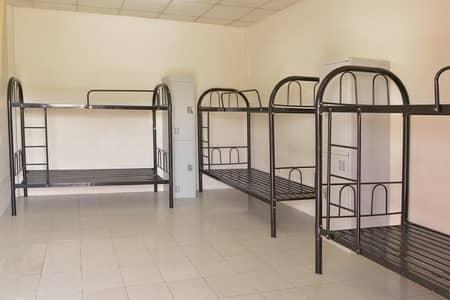 سكن عمال  للايجار في السجع، الشارقة - STUDIO FALTE AVAILBLE IN MUWAILEH NER SAFARI MALL SHRJAH