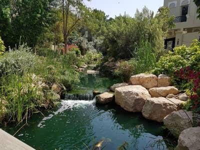 فیلا 6 غرف نوم للبيع في البراري، دبي - 6 Bedroom Luxurious | BEST PRICED | Must View Now | Type D