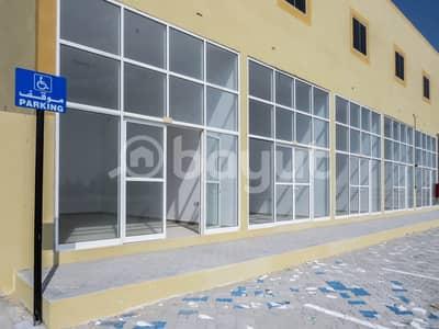 Shop for Rent in Madinat Zayed Western Region, Abu Dhabi - Bada Zayed