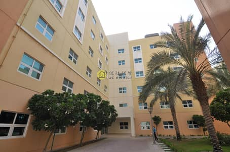Studio for Rent in Dubai Investment Park (DIP), Dubai - Shareable | Spacious unit | Flexible Payment