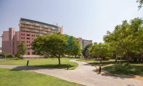3 Bedroom Apartment for Rent in The Gardens, Dubai - Great Studio | Modern Layout | 1 Month Free