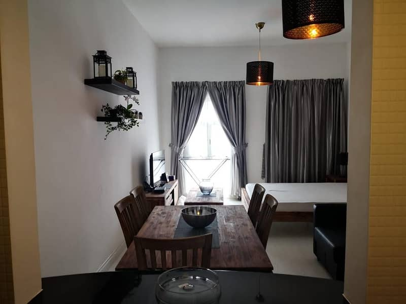 Spacious fully furnished studio, recently renovated