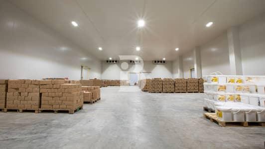 مستودع  للبيع في مجمع دبي الصناعي، دبي - COLD Storage For SALE -Installment possible
