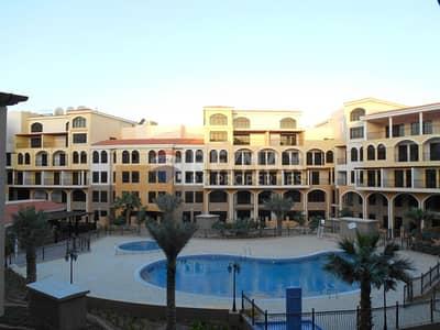 استوديو  للايجار في قرية جميرا الدائرية، دبي - Very Clean   Full Pool View  Studio Fortunato JVC