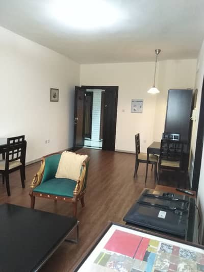 Nice and big furnished One Bedroom Hall for rent