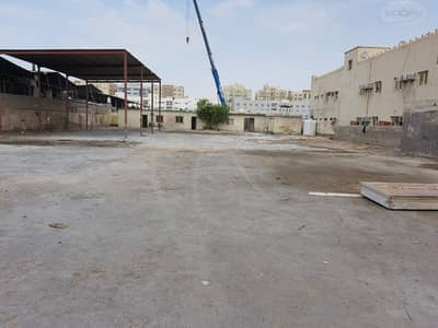 Warehouse for Rent in Al Nahda, Sharjah - 20000 square feet open yard