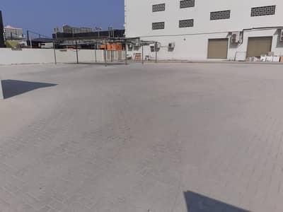 ارض سكنية  للبيع في النعيمية، عجمان - ارض سكنية في النعيمية 1 النعيمية 3200000 درهم - 4853789