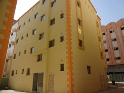 Bulk Unit for Rent in Muwaileh, Sharjah - Studio Flats Available for staff accommodation in Muweillah