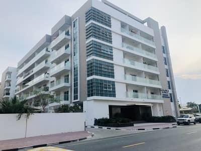 شقة 1 غرفة نوم للايجار في مجمع دبي للاستثمار، دبي - Spacious 1BHK  with kitchen appliances in DIP@38K