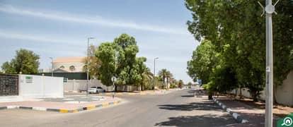 Al Masoudi