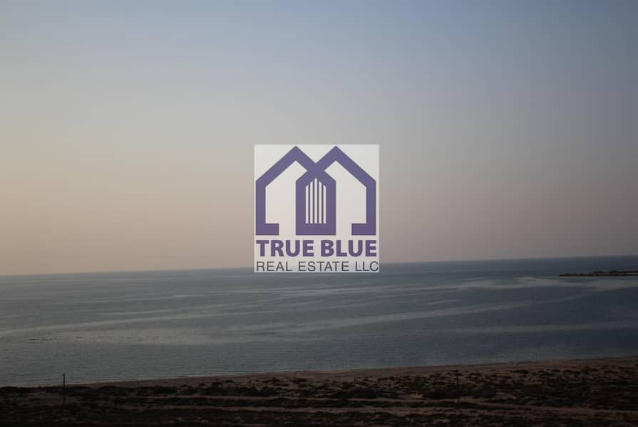 10 Cozy Studio | Beautiful Sea view |  Affordable price