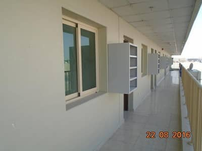 Labour Camp for Sale in Jebel Ali, Dubai - DIRECT FROM OWNER  G+4 Freehold camp 176 rooms