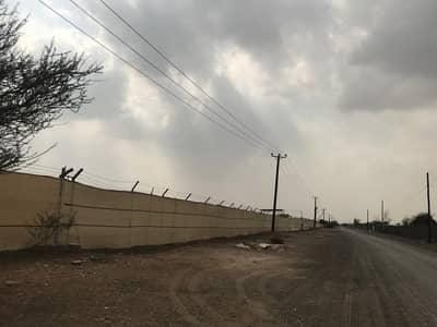 Other Commercial for Sale in Al Dhaid, Sharjah - Farm for sale in Sharjah, Al Dhaid, a great location close to the main street