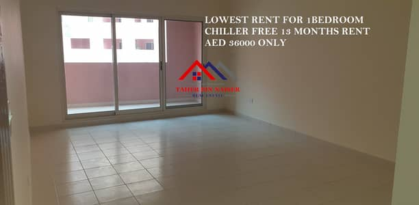 1 Bedroom Apartment for Rent in Discovery Gardens, Dubai - PAY LOWEST RENT 2 Bath Large 1 Bedroom with 1 Balcony in Street 1,