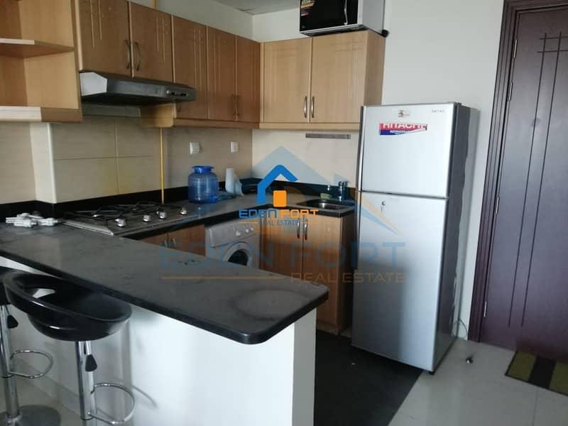 10 Fully Furnished-1BHK-Elite Residence-DSC