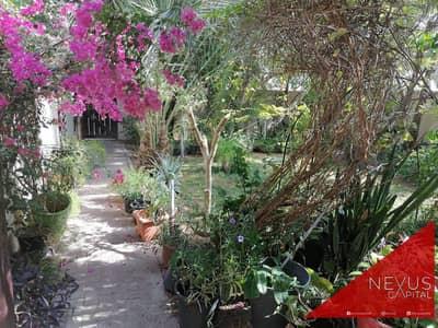 3E    Best Garden in Al Reem   Well maintained