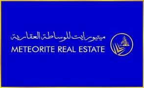 Meteorite Real Estate