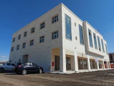 فلیٹ 2 غرفة نوم للايجار في الهيلي، العین - شقة في الهيلي 2 غرف 32000 درهم - 4905675