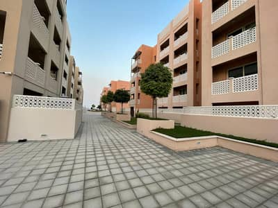 2 Bedroom Flat for Sale in Dubai Waterfront, Dubai - Cheapest 2 BHK with Balcony for Rent in Badrah