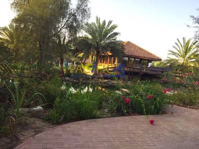 Other Commercial for Sale in Al Khawaneej, Dubai - Lovely and Beautiful  Farm I Fully Equipped