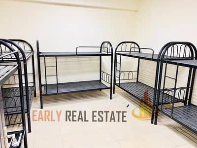 Labour Camp for Rent in Mussafah, Abu Dhabi - NEW LABOURCAMP I  BUS PARKING I COOKING I FACILITIES