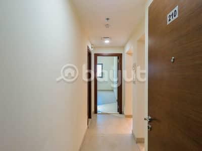 فلیٹ 1 غرفة نوم للايجار في الورسان، دبي - Brand New I Balcony I 13 Month Contract I 35K
